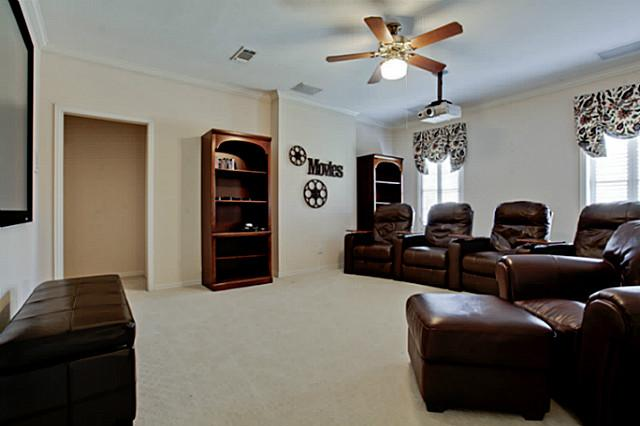 1508 Nelson Drive media room