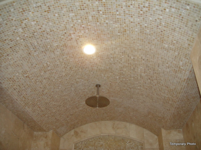 5233 Stonegate shower ceiling