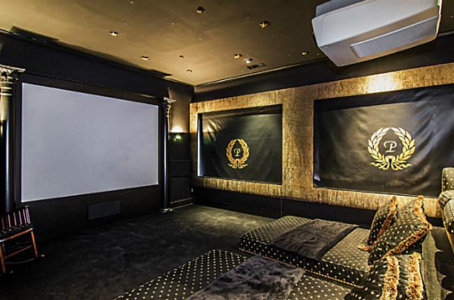 5323 Swiss master private theater