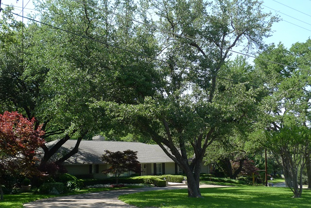 Lee Trevino's old house