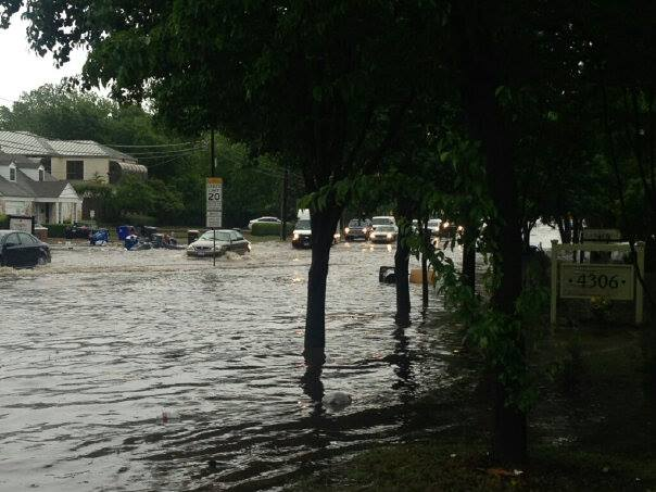 Climate Change And Real Estate Should We Insure Trees