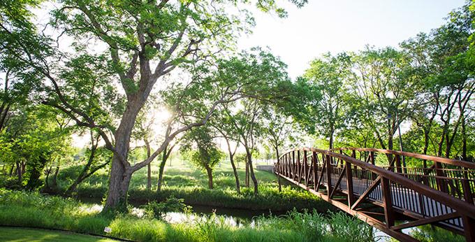 Addison-Texas-Fiori-on-Vitruvian-Park-Apartments-Park-3