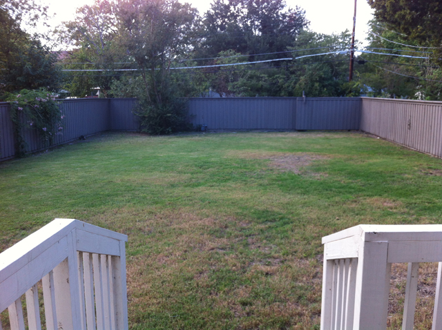 8919 Forest Hills Backyard