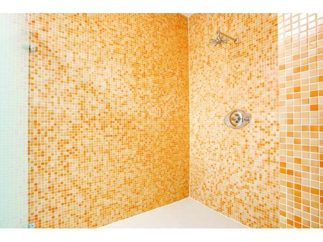 2211 N. Fitzhugh Master Shower