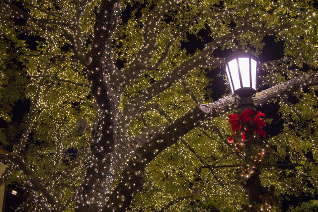 Want incredible Christmas lights like Highland Park Village? Hire a professional. (Photos: Sarah Beauregard)