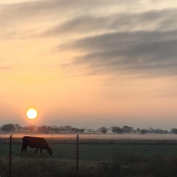 Baxter Brinkmann Sells Last Ranchland Hold Out In Frisco