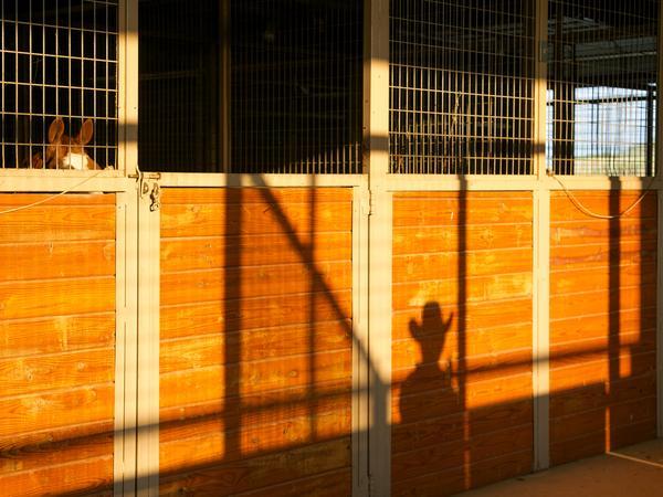 7-rocking-w-ranch-barn-shadow-600xx1777-1333-112-0