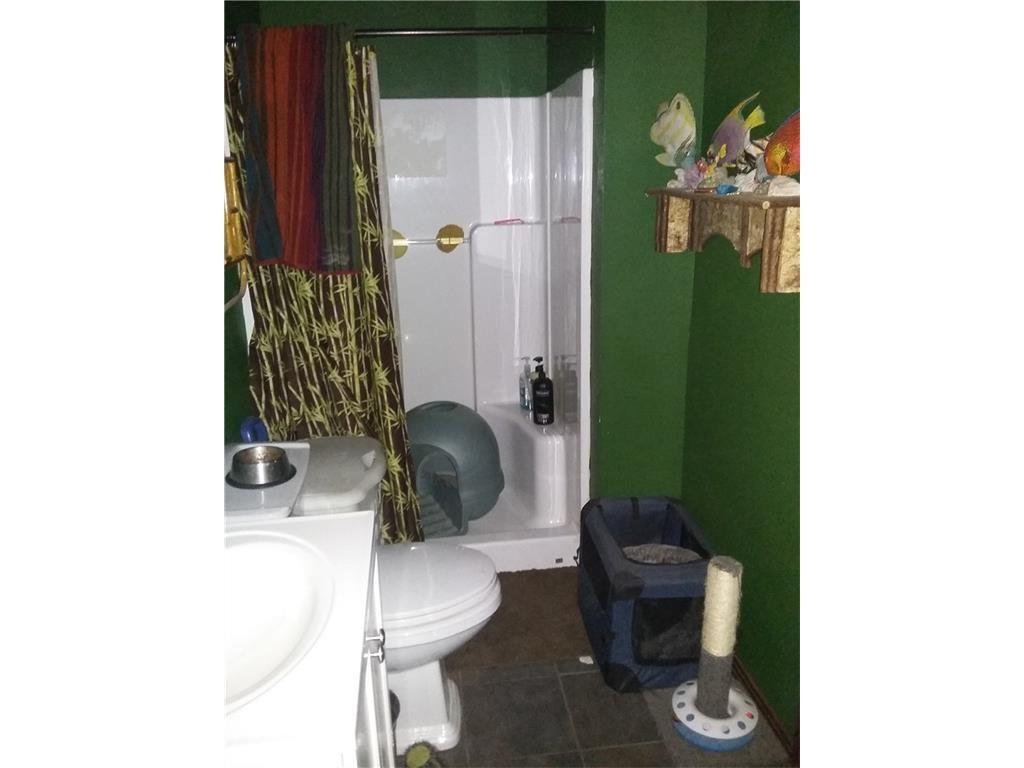 Cat bathroom