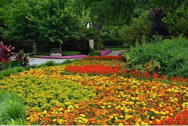 Photo courtesy of Dallas Arboretum