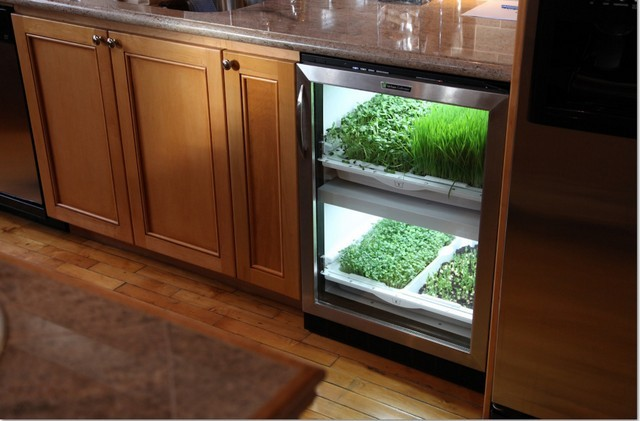 Photos courtesy of Urban Cultivator