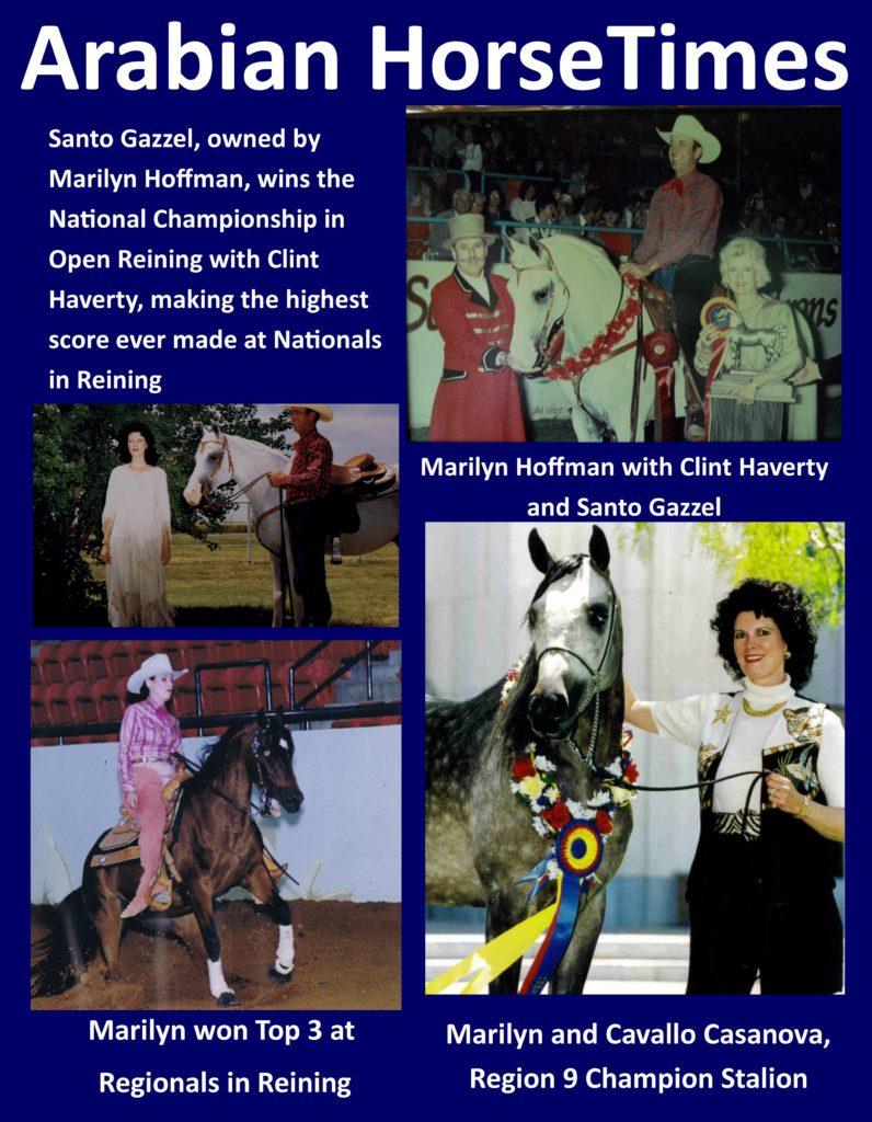 Arabian Horse Times