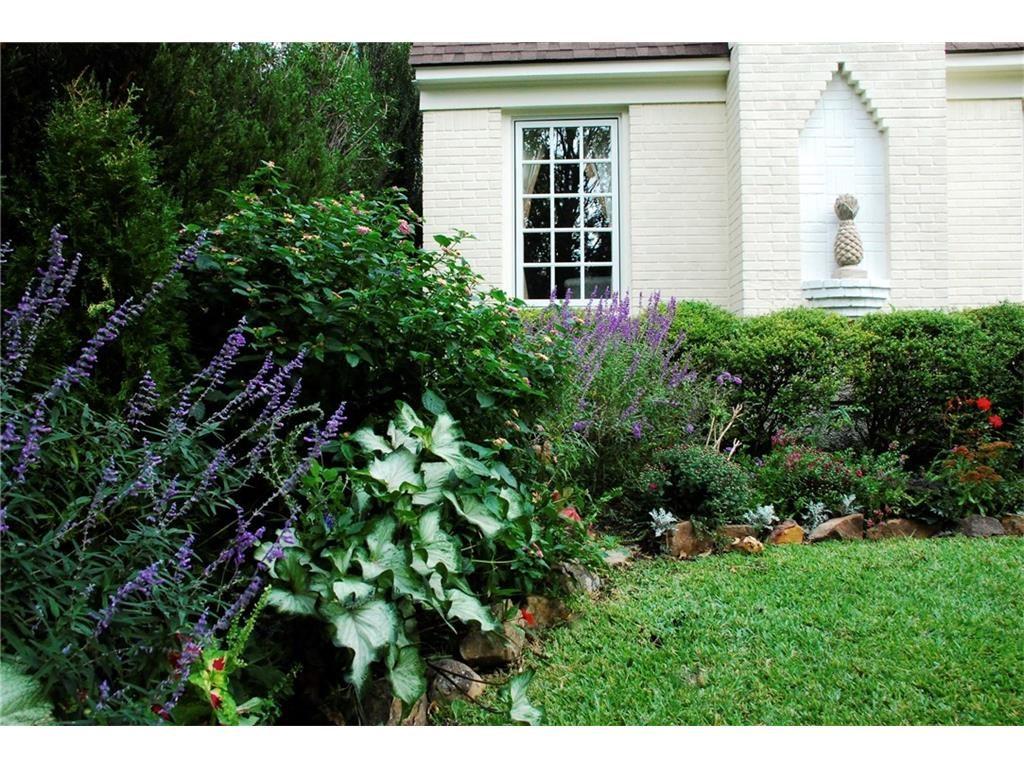 914 Cordova front garden left