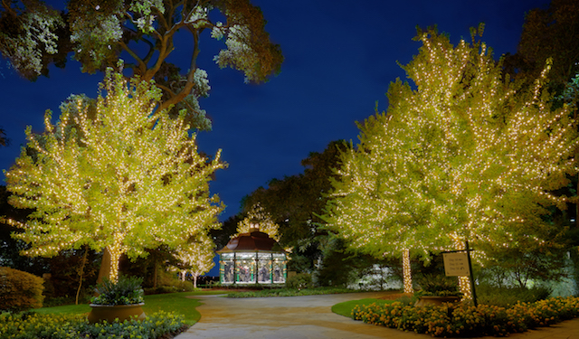 Dallas Arboretum 12 Days of Christmas|candysdirt.com