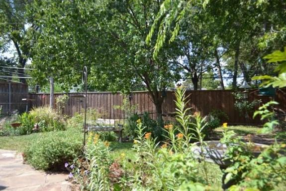 417 Allison Backyard
