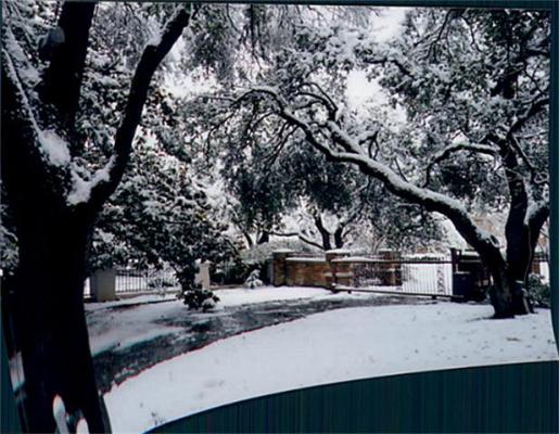5444 Northbrook snow