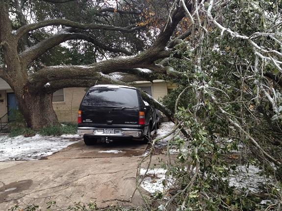 Ice tree on car E Dallas