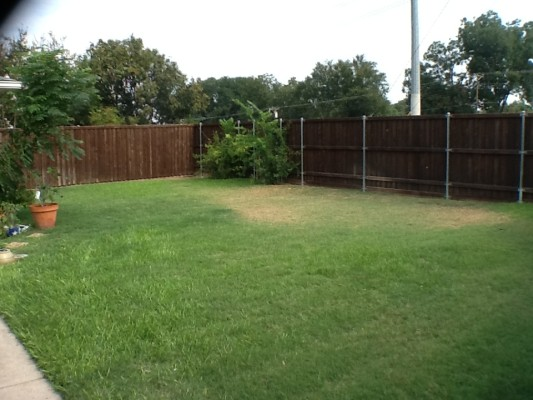 Lange Backyard