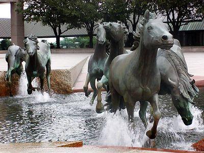 Las Colinas Horses