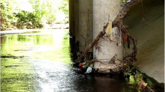 bag litter 2 Five Mile Creek